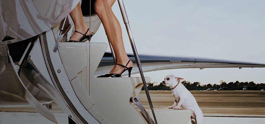 private jets and pets